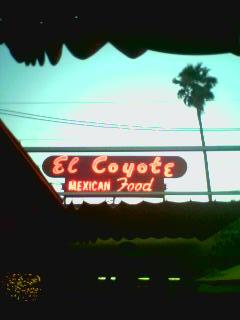 el-coyote